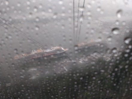 Fog on tram