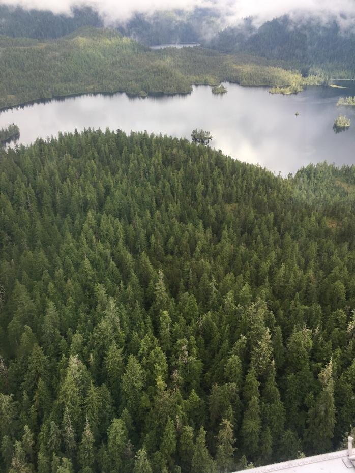 Misty Fjords 1